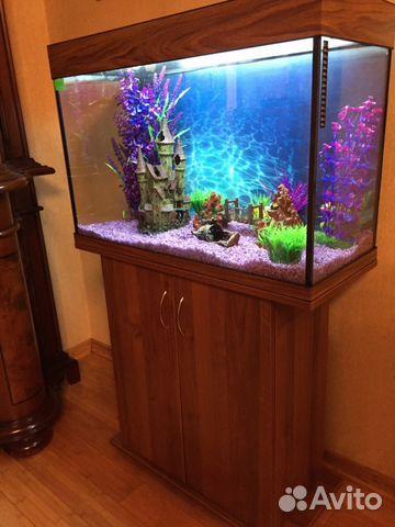 Как сделать аквариум на 100 литров