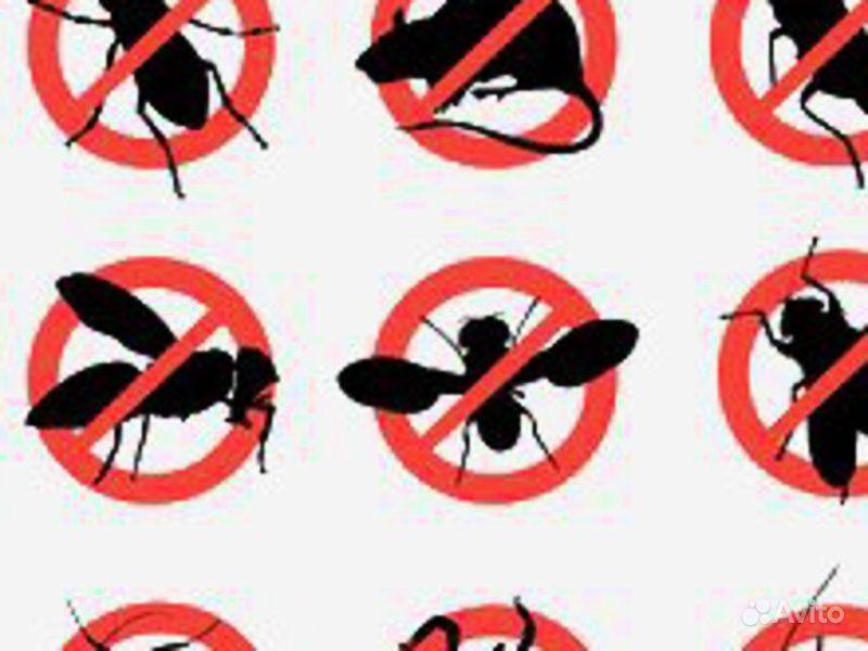 уничтожение паразитов в организме