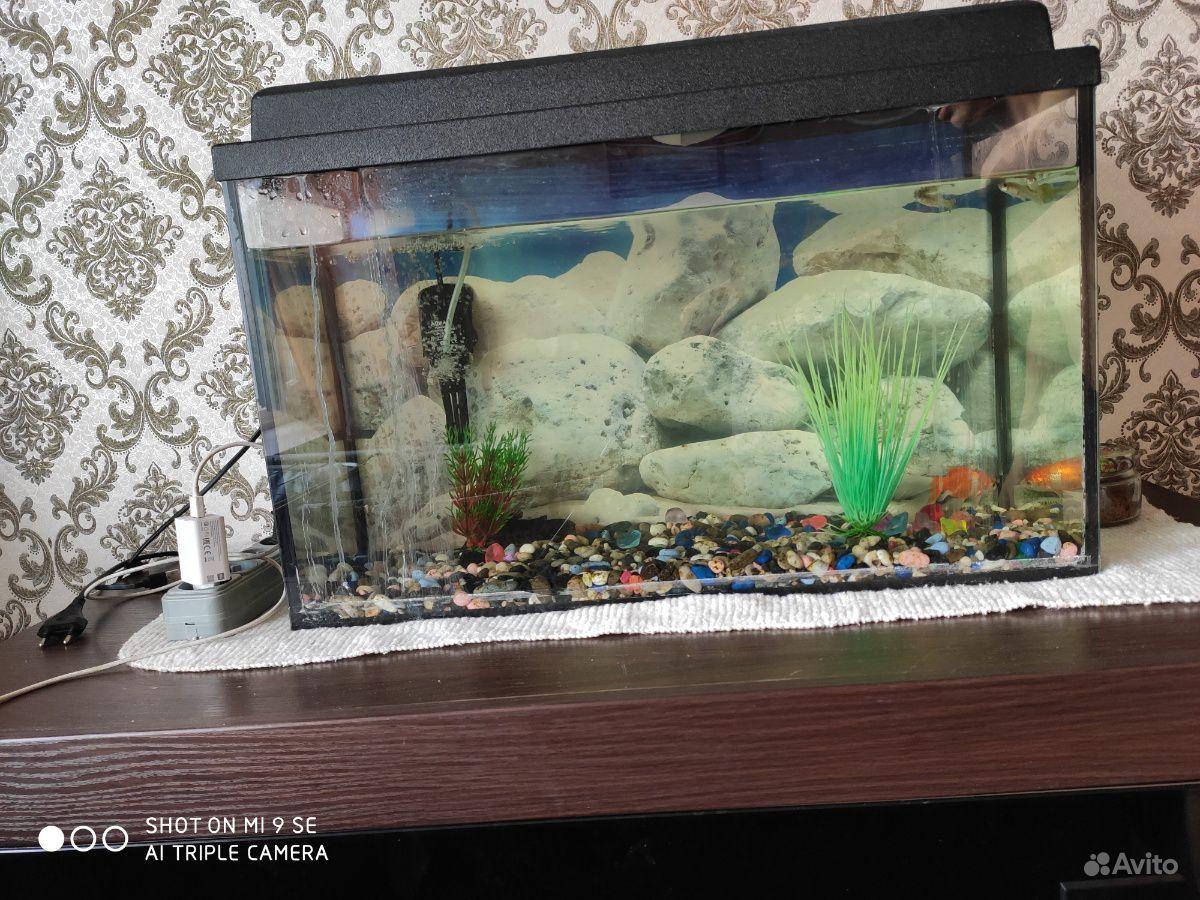 Украшение для аквариума купить на Зозу.ру - фотография № 2
