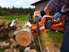 Спил И обрезка деревьев,карчевка,расчистка,вывоз