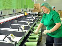 Работа на конвейере в москве без вахты для женщин ооо карталинский элеватор