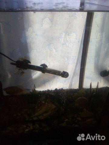 Продам аквариум 89788263387 купить 3