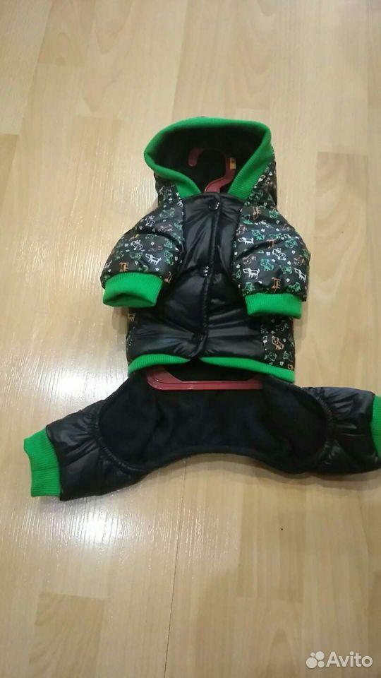 Одежда для собак  89121237511 купить 1